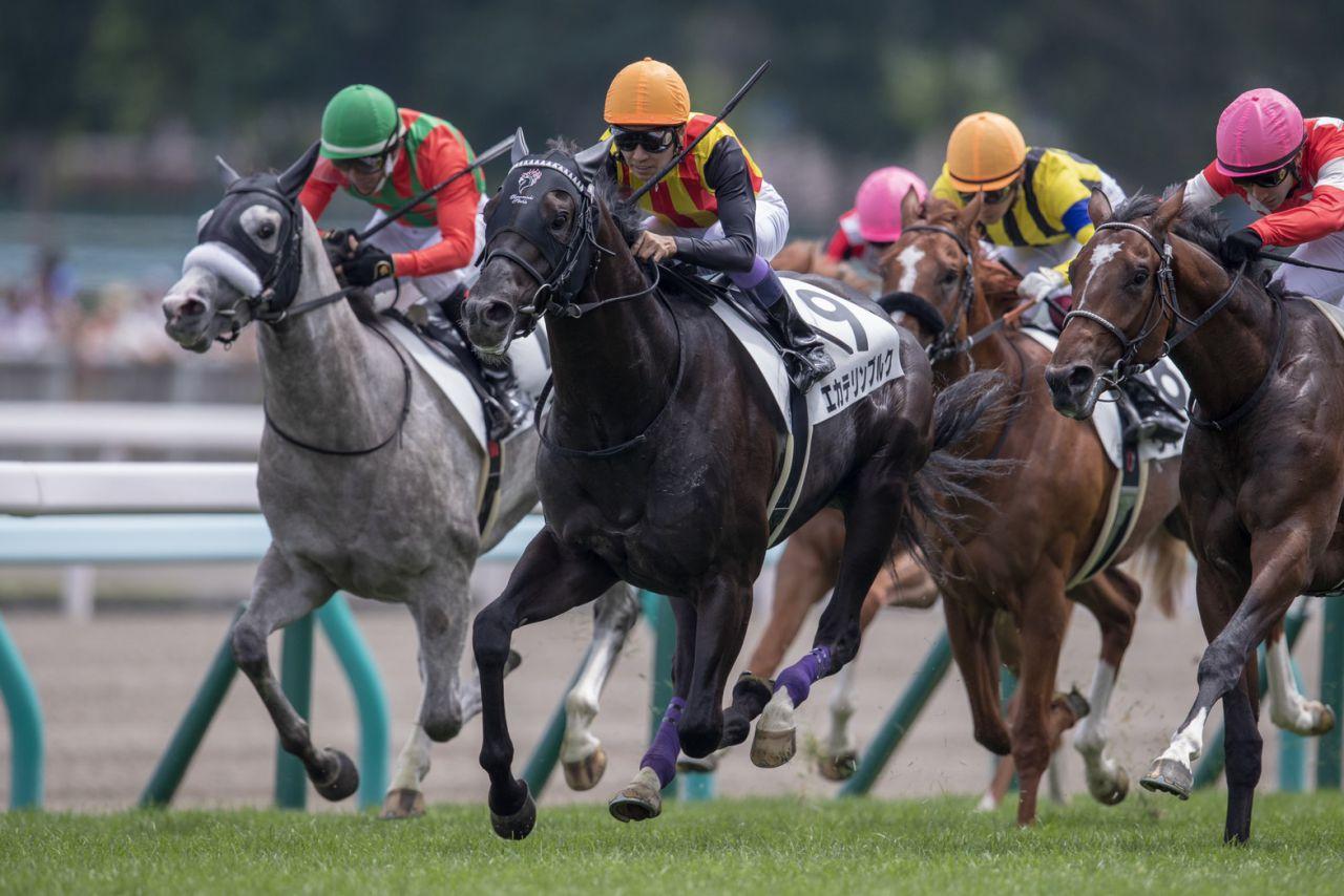 【新馬/札幌5R】武豊エカテリンブルクが圧倒的人気に応える!