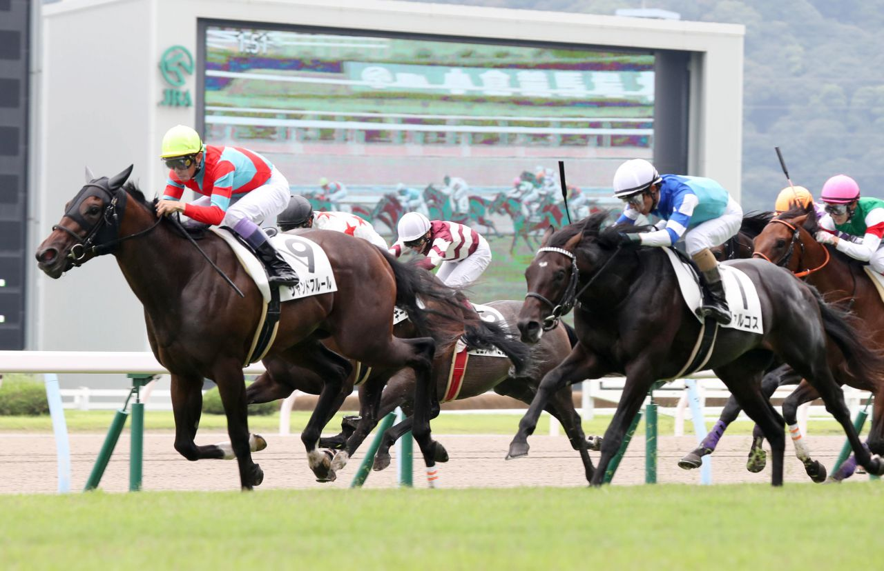 【新馬/小倉5R】武豊騎手がキズナ産駒で勝利!シャンドフルールがデビュー勝ち