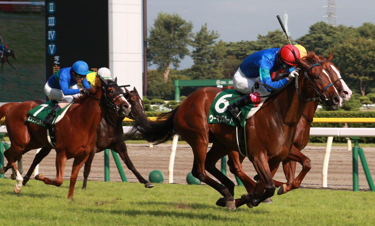 【新潟2歳S】ウーマンズハートがデビュー2連勝で重賞初制覇!