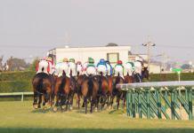 HOME |競馬の最新ニュース|