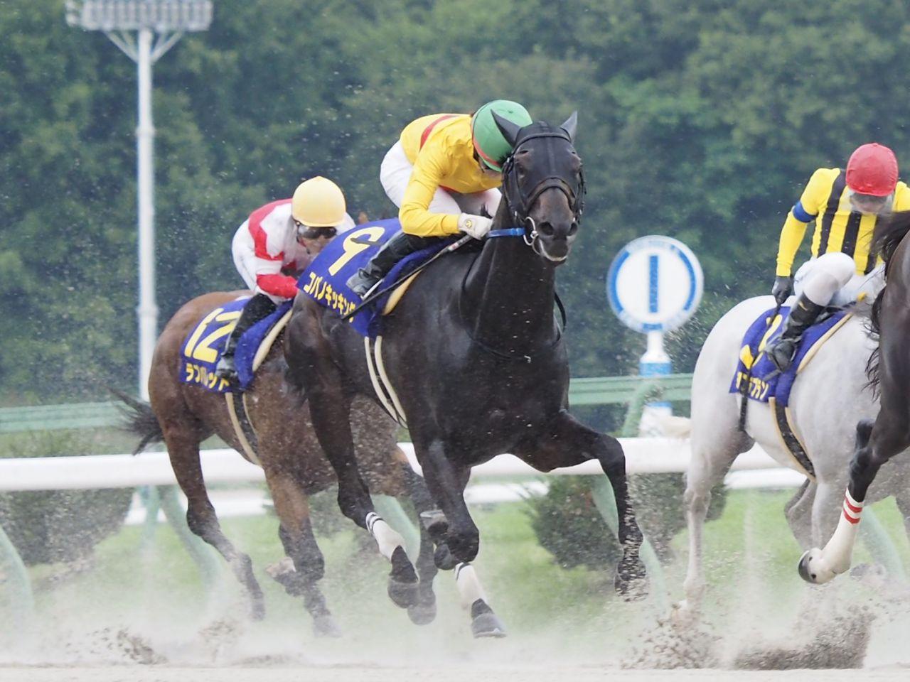 【クラスターC】岩田康「菜七子ちゃんが勝つ予定だったんですけどすいません」ヤマニンアンプリメが交流重賞連勝