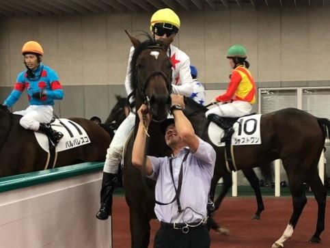 石橋脩「心肺機能高い」土曜新潟5R新馬は2番人気・ミッキーメテオが制す
