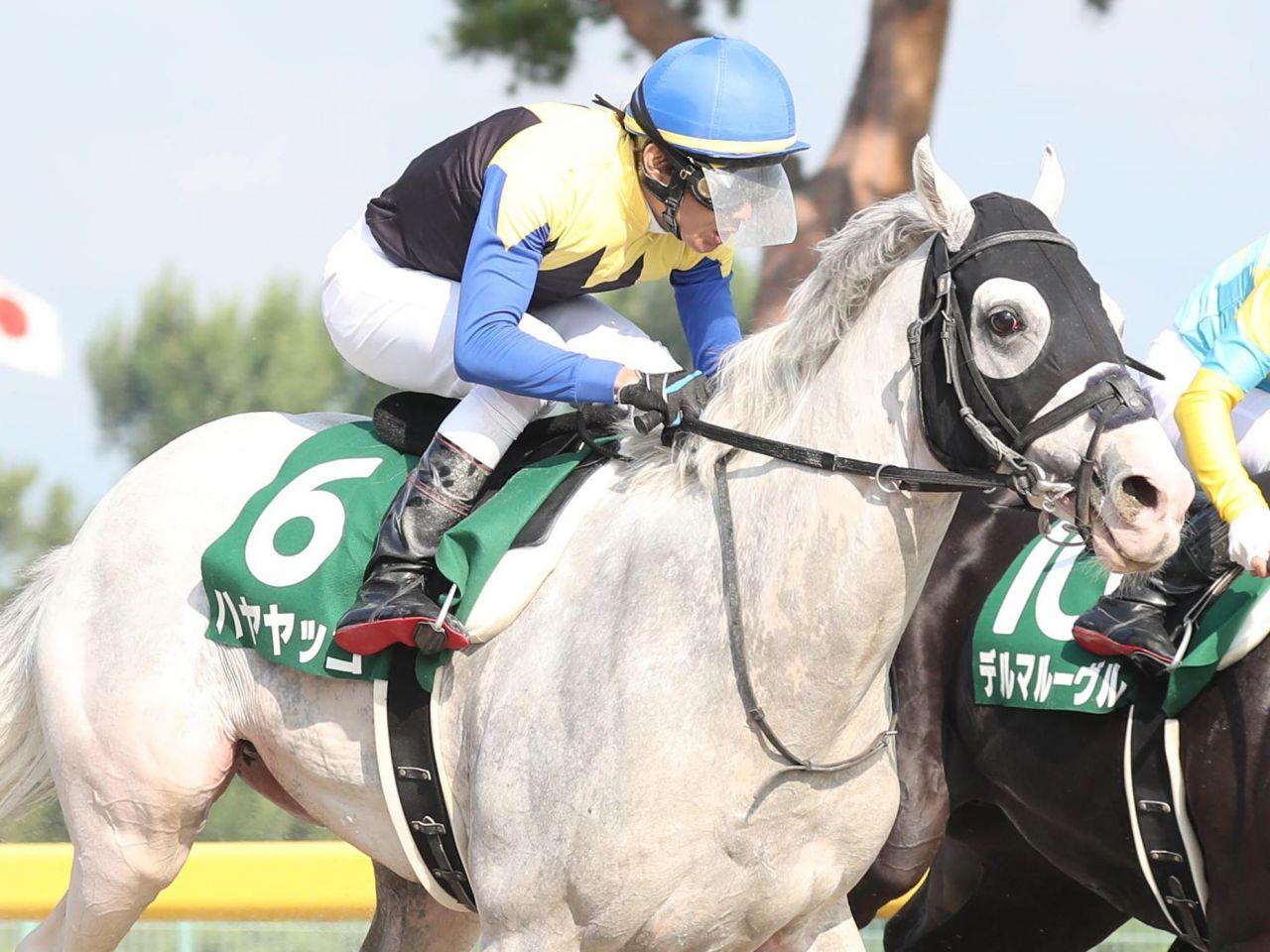 【レパードS】田辺「脚質の幅も出た」ハヤヤッコが白毛馬初の重賞制覇!