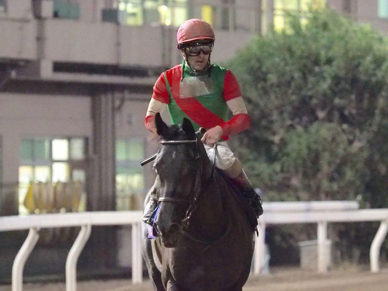 【クラスターC】JRA出走予定馬