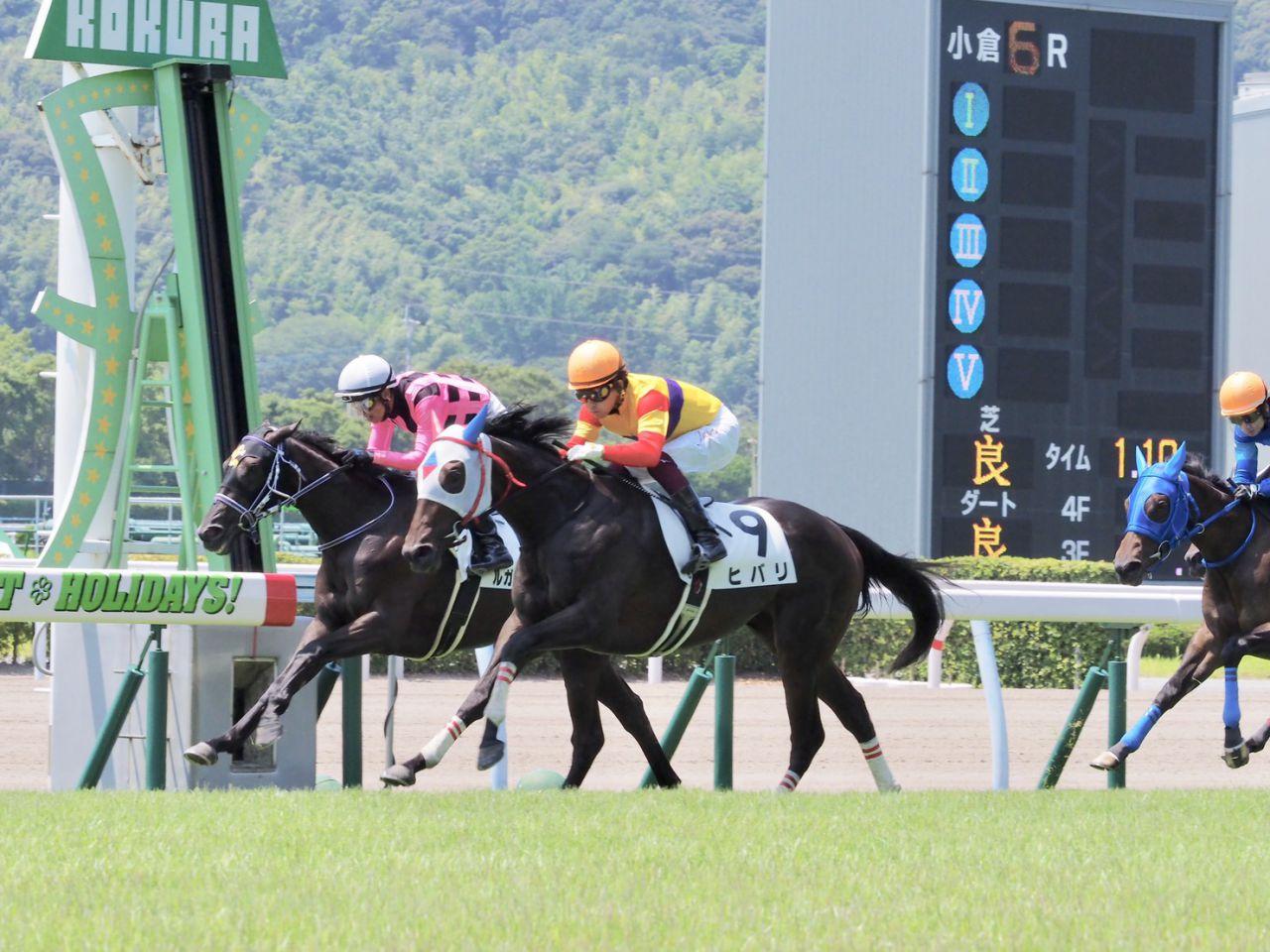 【新馬/小倉6R】ヒバリが差し切ってV!デビュー戦を快勝