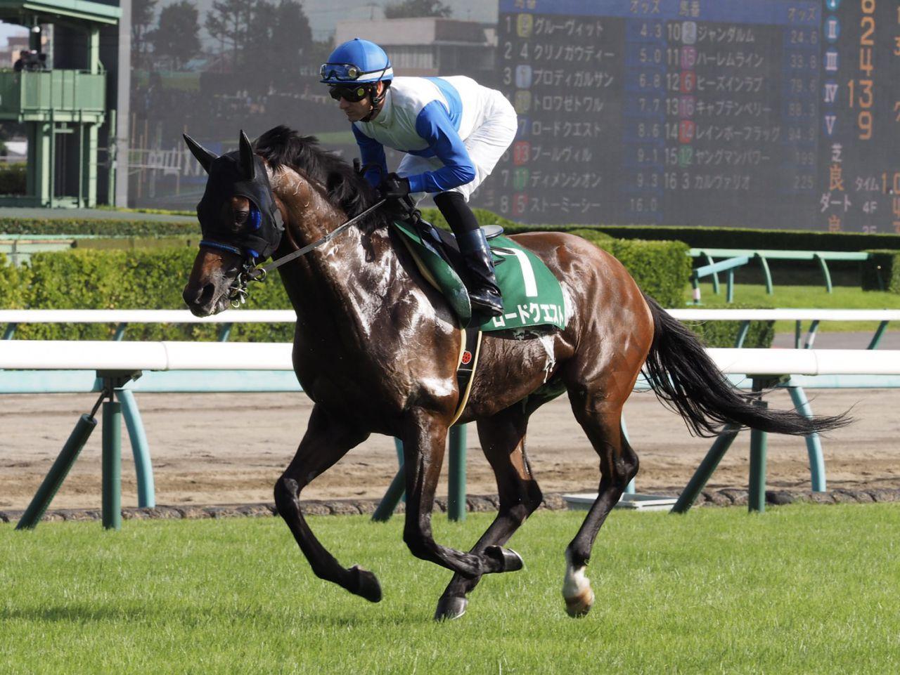 【セントウルS】武豊「いつもの走りでは…」レース後ジョッキーコメント