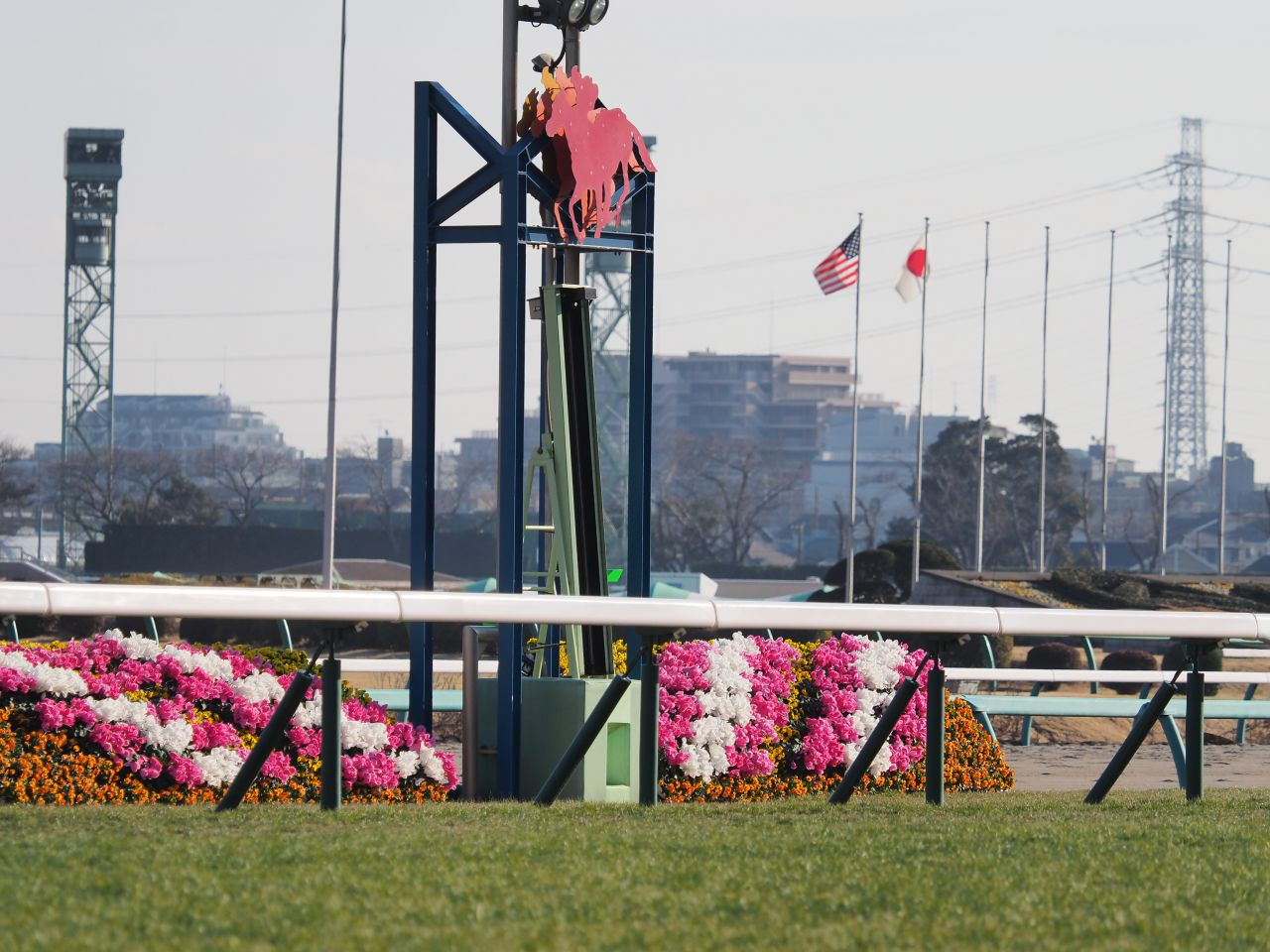 アポロケンタッキー号が競走馬登録抹消