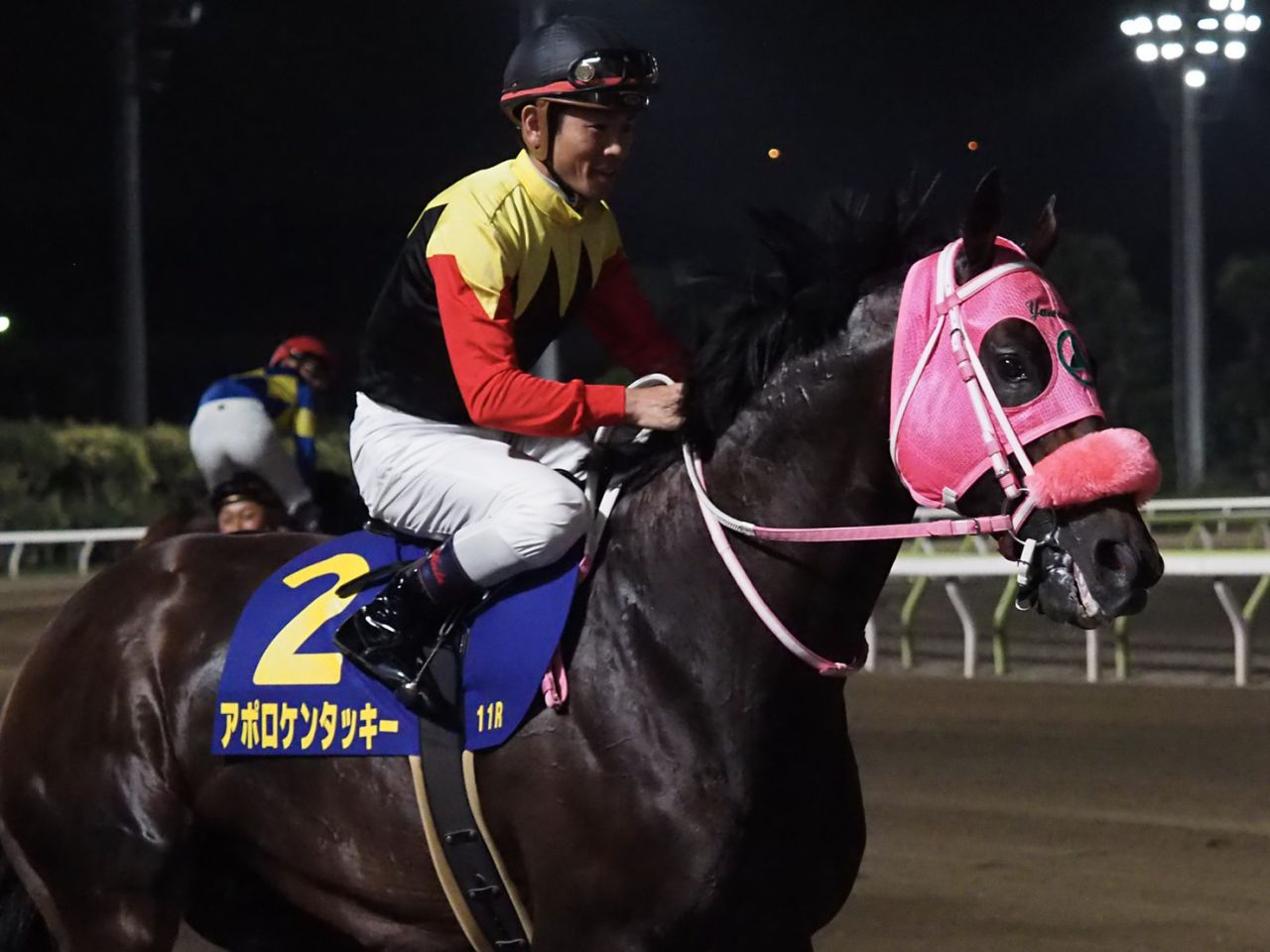 マイルチャンピオンシップ(GⅠ)海外からの予備登録馬