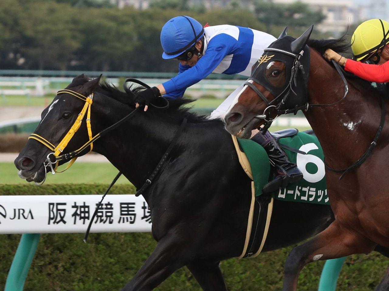 【シリウスS】藤岡佑「強気に出て良かった」ロードゴラッソが重賞初V!