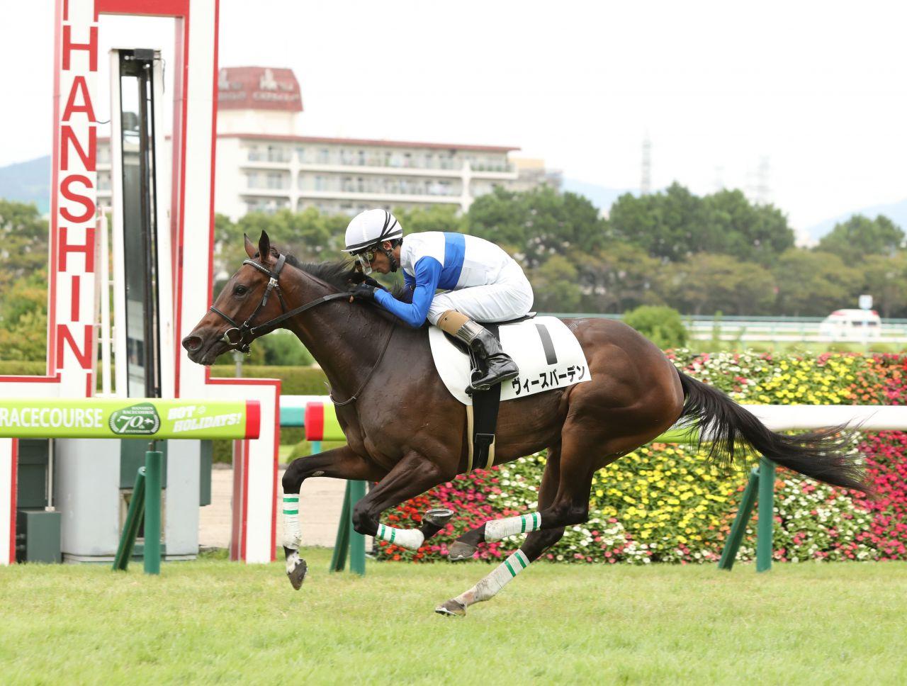 【新馬/阪神4R】ディープ産駒 ヴィースバーデンがデビュー勝ち