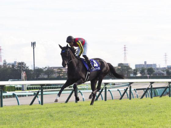 【PHOTO】スプリンターズステークス