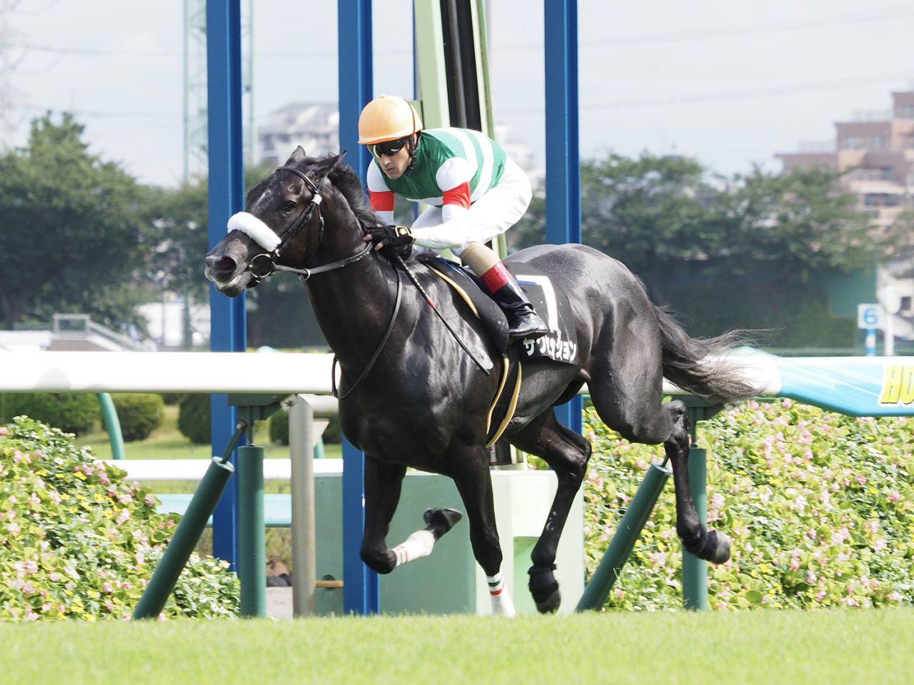 【アスター賞】サクセッションが圧倒的人気に応えてデビュー2連勝!