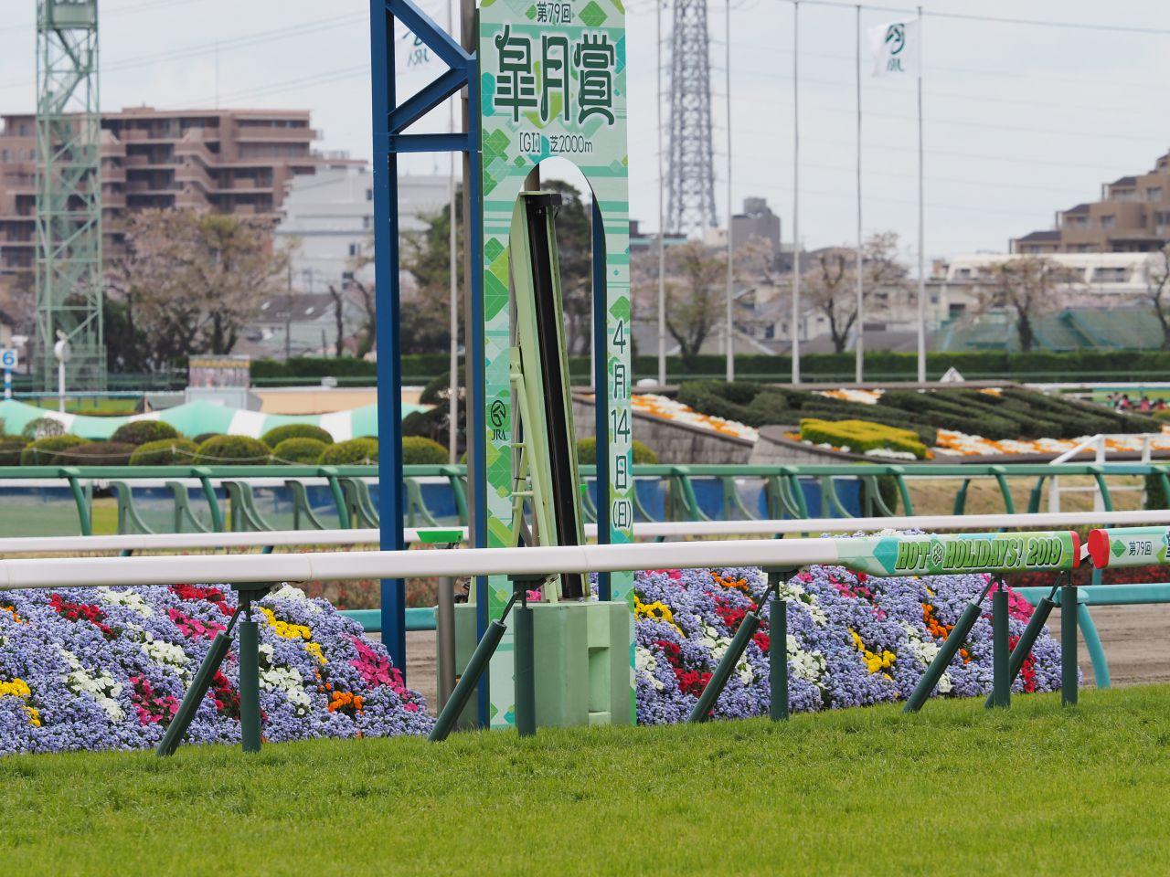 武豊「着差以上の勝ち方」タマモツワモノが新馬勝ち