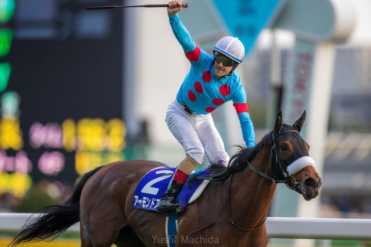 【天皇賞・秋】G1馬10頭の競演!アーモンドアイ勝利で前年比大幅アップ