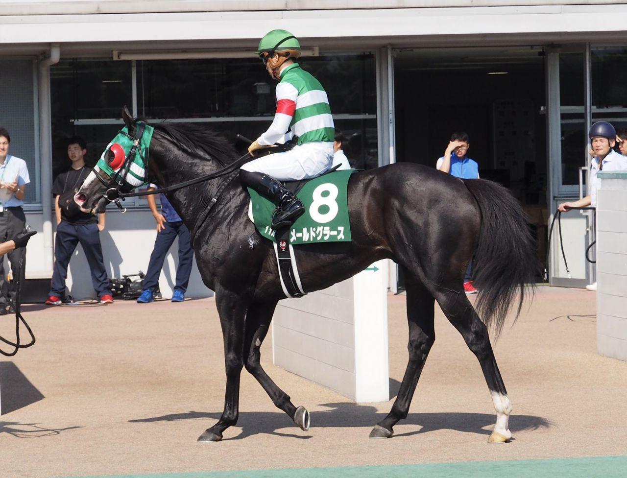 2019コーフィールドカップ(G1)日本馬の近況(10月10日)