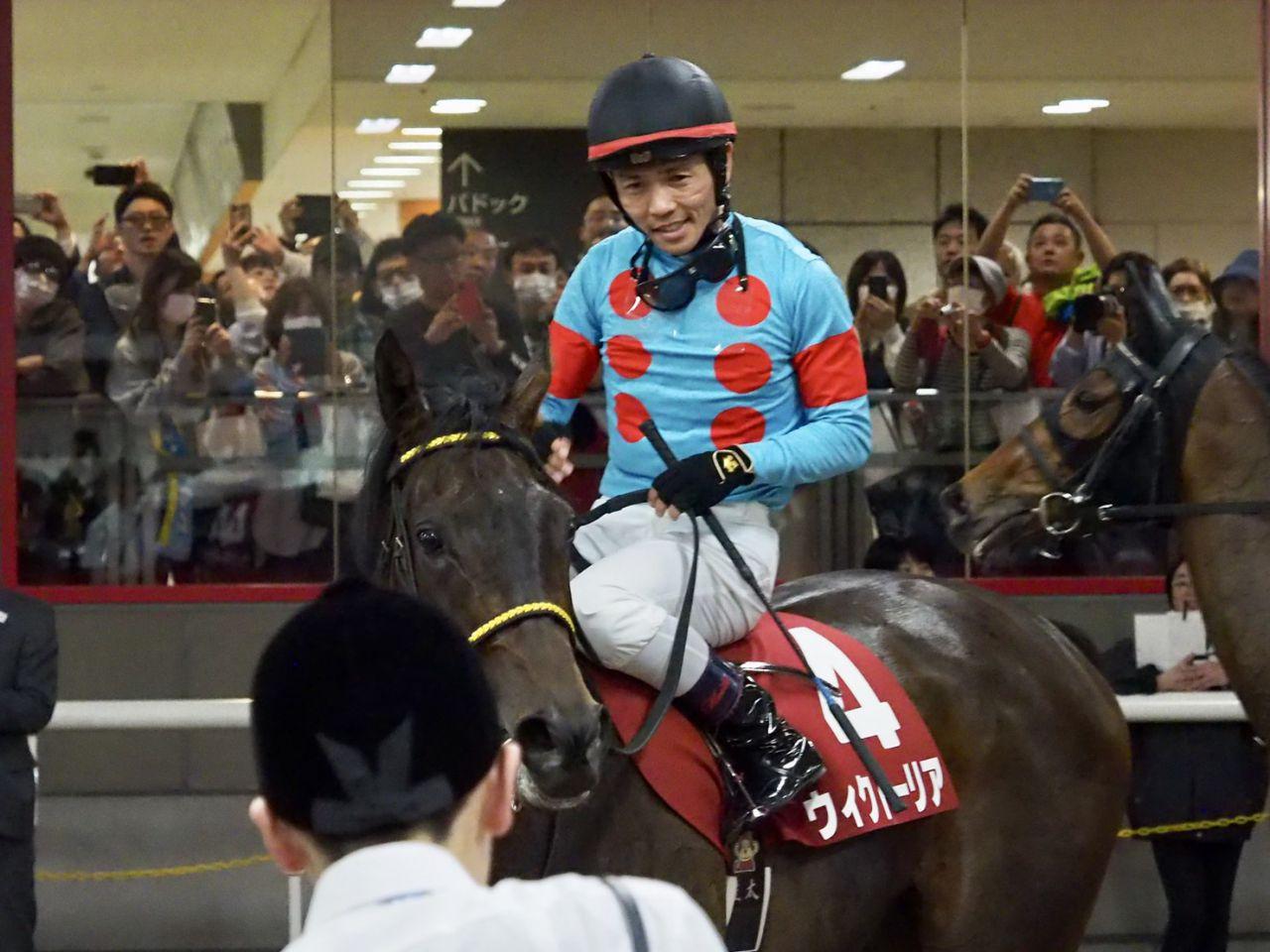 ウィクトーリア号が競走馬登録抹消