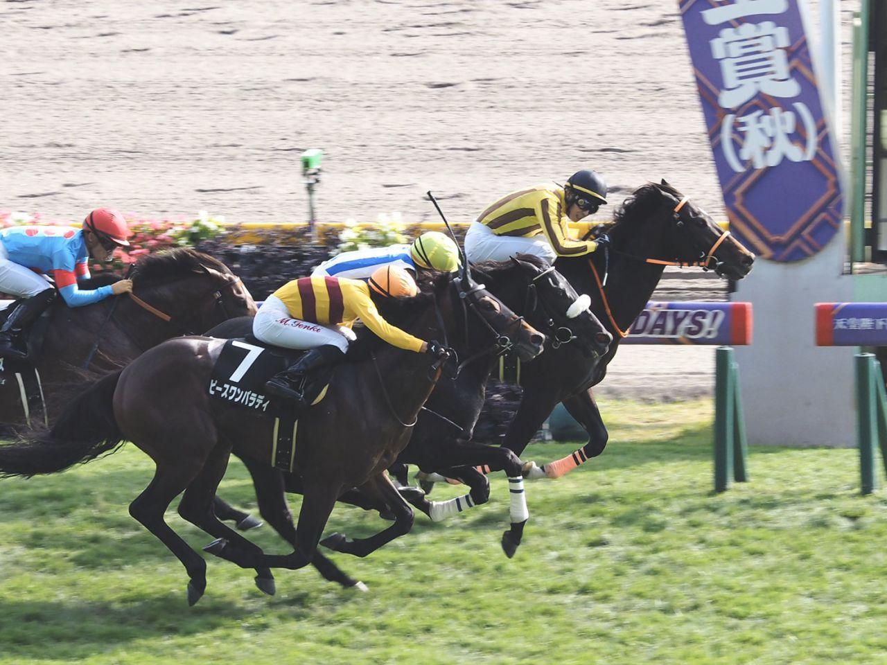 【東京8R】天皇賞と同距離はアトミックフォースが勝利