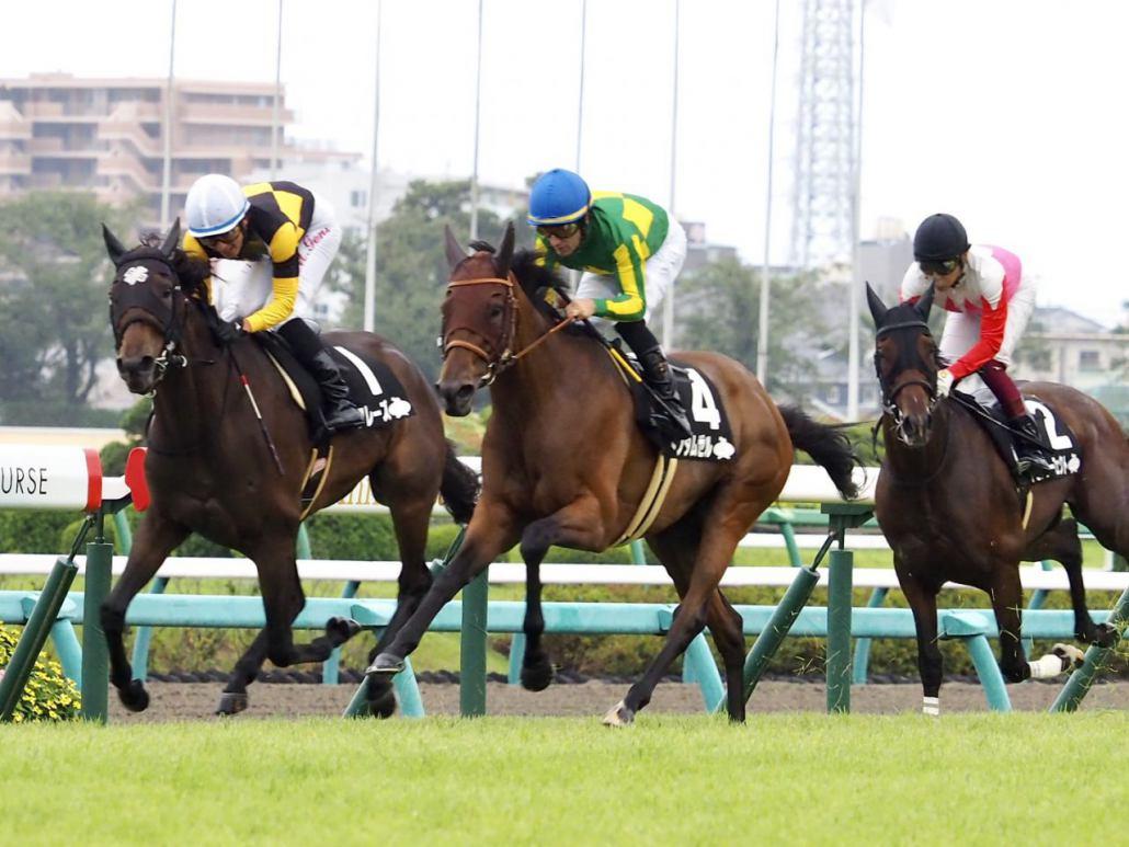 【秋華賞】登録馬と見どころ ダノンファンタジーなど