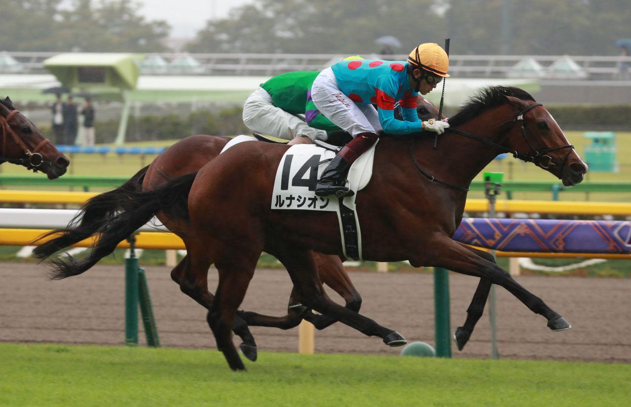 【新馬/東京5R】ルナシオンが絶望的な位置から差し切り勝ち!半兄にスワーヴリチャード