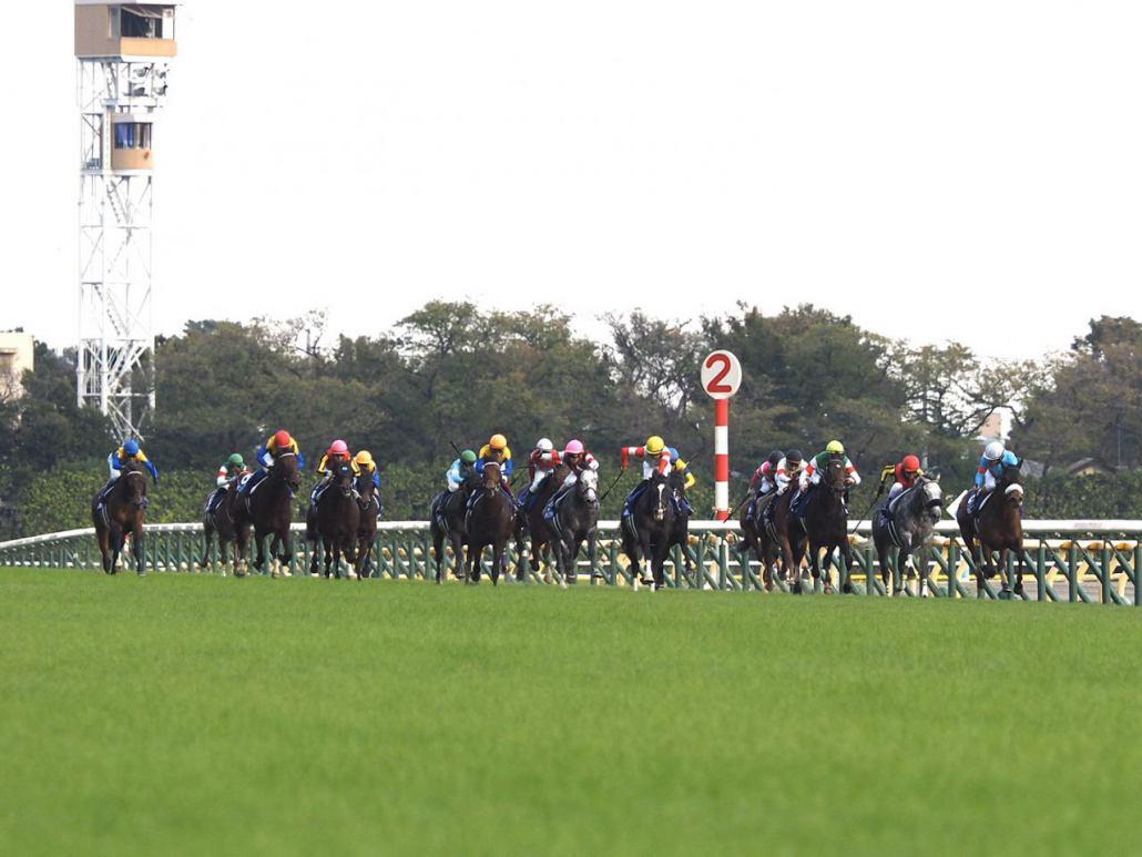 【天皇賞・秋】武豊「脚を溜める余裕もなかった」レース後ジョッキーコメント