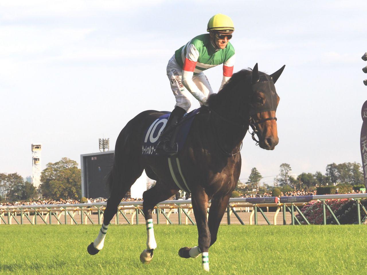 アドミラブル号が競走馬登録抹消