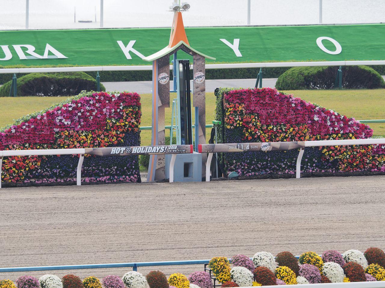 東京競馬10月12日、13日の開催中止について