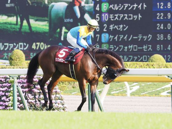 【PHOTO】G2レース(芝)
