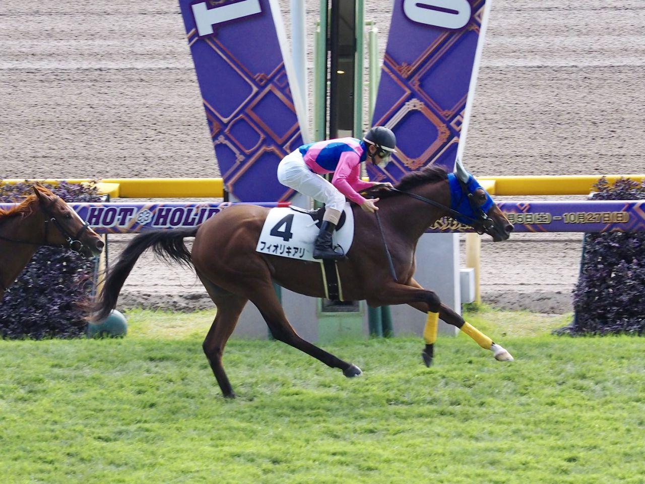 【新馬/東京4R】フィオリキアリがデビュー勝ち!スパングルドスターは大敗