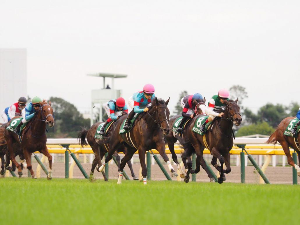【アルテミスS】ルメール「いい競馬が出来た」レース後ジョッキーコメント