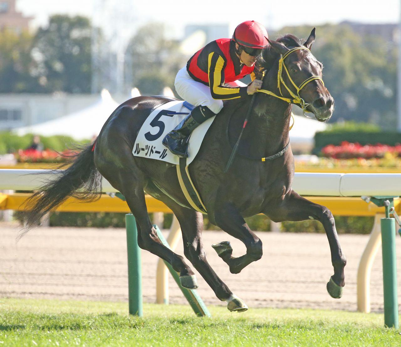 【新馬/東京5R】ルーツドールが圧勝デビューV!フェエールマン半妹