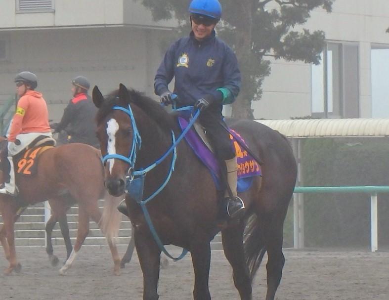 【アルゼンチン共和国杯】オジュウチョウサン 和田郎師「松岡騎手が思い切った競馬をしてくれれば」