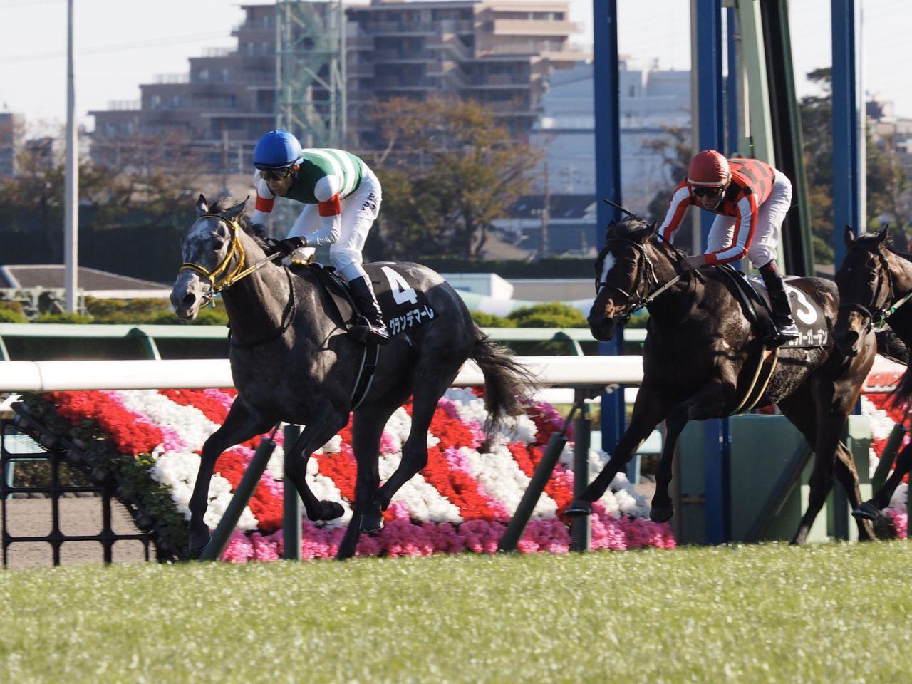 【葉牡丹賞】グランデマーレがデビュー2連勝!