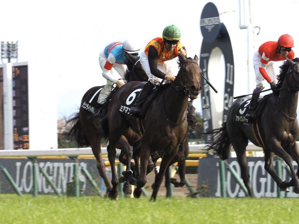 【ベゴニア賞】ルメール「凄くいい馬」ミアマンテがデビュー2連勝!