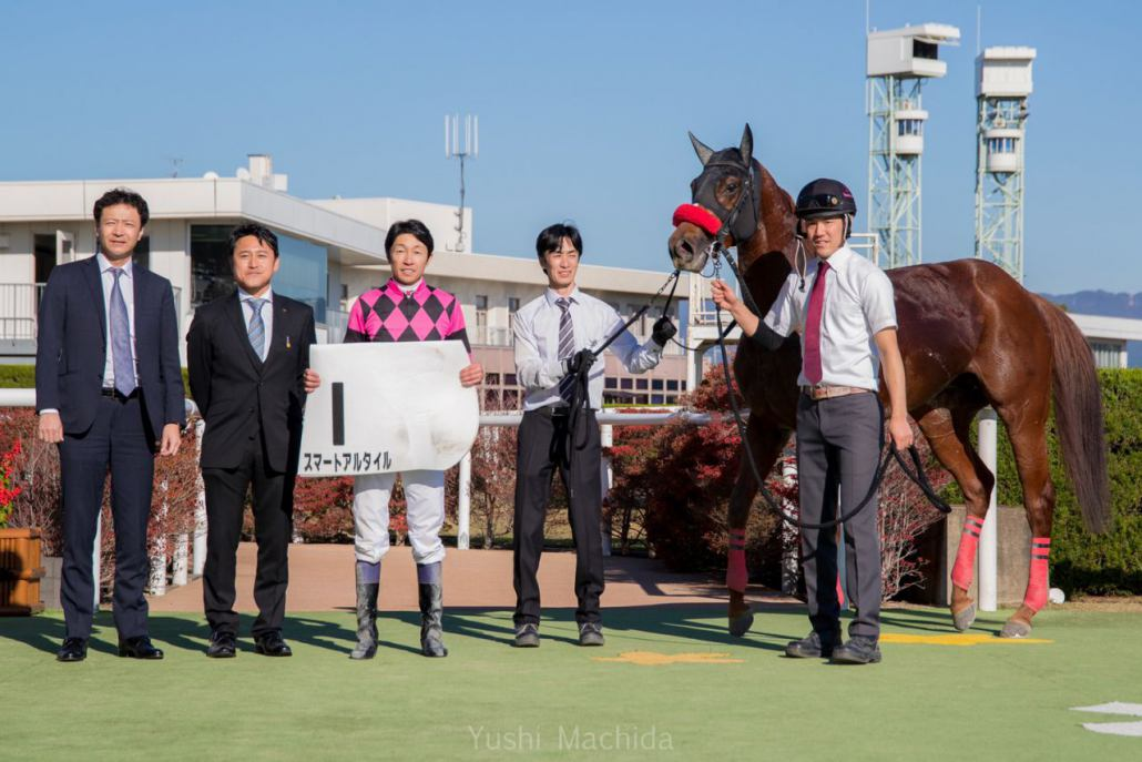 【京都8R】武豊スマートアルタイルが人気に応える!