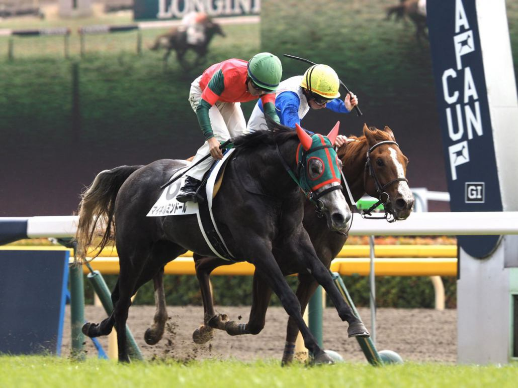 【東京3R】武豊「伸びなかった」キタサンブラックの全弟エブリワンブラックは6着
