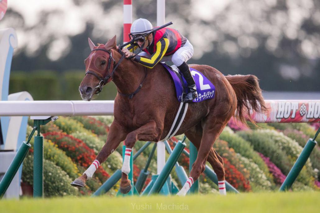 【エリザベス女王杯】Mデムーロ「勝った馬は強かったです」レース後ジョッキーコメント