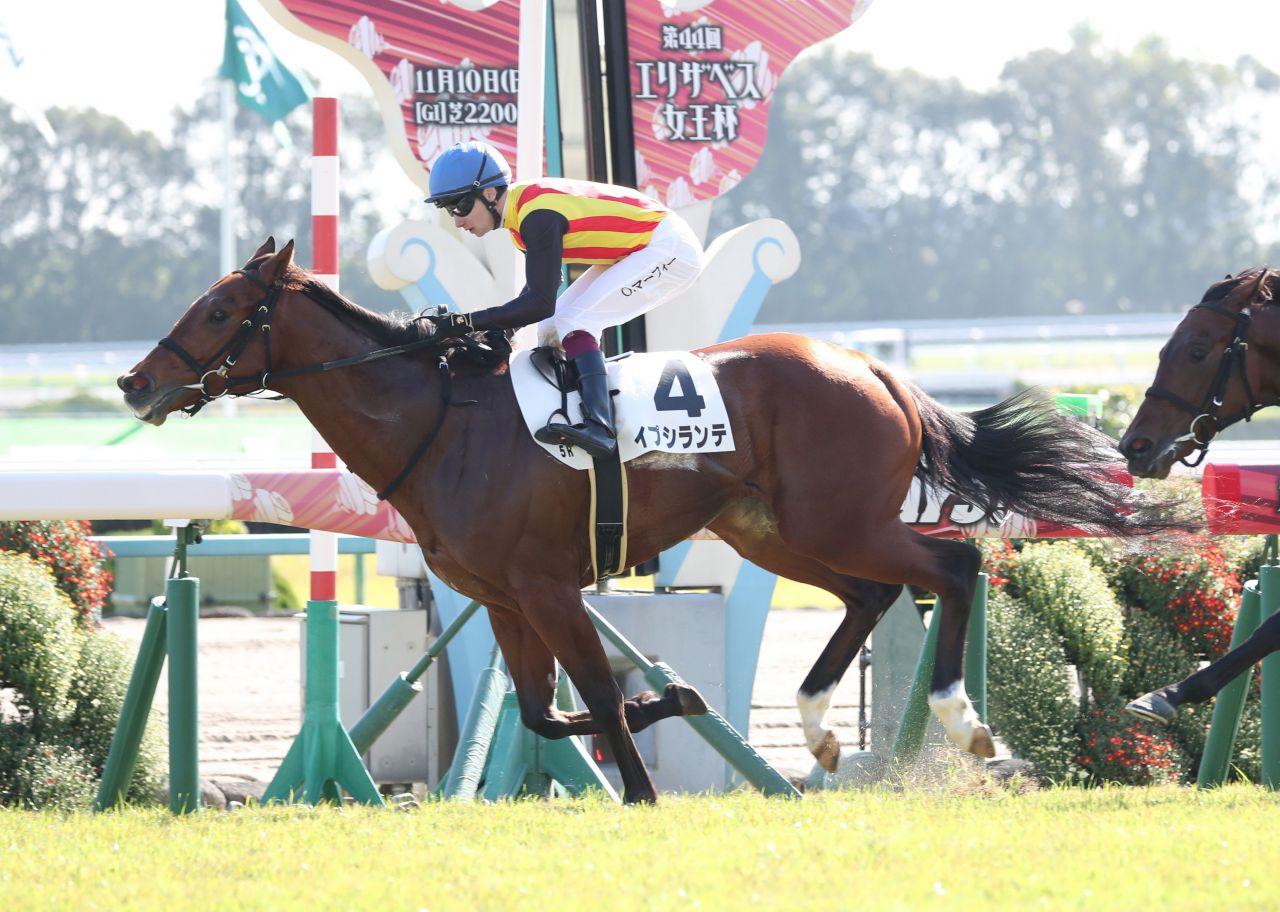 【新馬/京都5R】イプシランテが逃げ切りV!マーフィー早くも2勝目