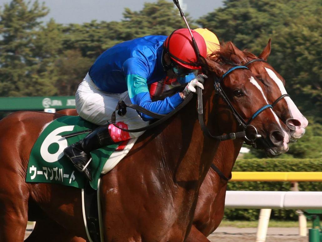 【阪神JF】登録馬と見どころ リアアメリアなど