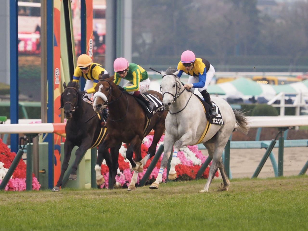 【阪神C】スミヨン「勝った馬が強かった」レース後ジョッキーコメント