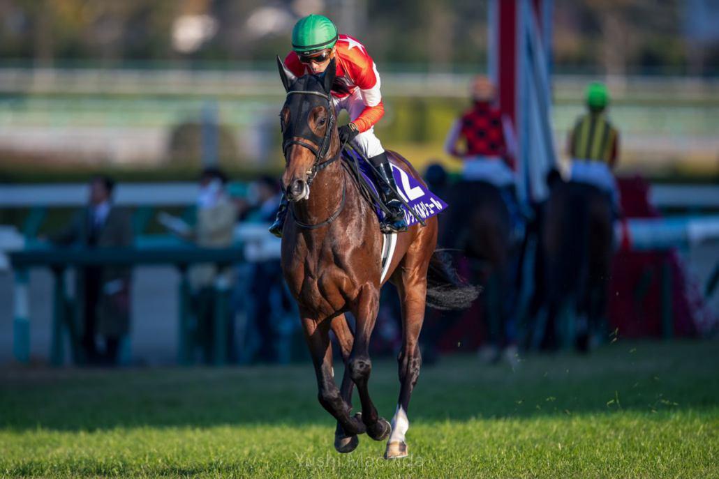 【朝日杯FS】武豊「勝った馬が強かった」レース後ジョッキーコメント