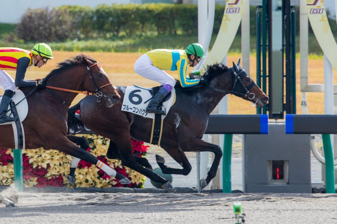 【中京3R】武豊 ブルーコンパクタが2勝目