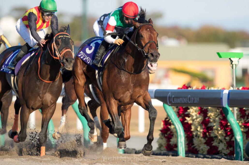 【チャンピオンズC】ルメール「勝ち馬が強かった」ゴールドドリームは惜しい2着
