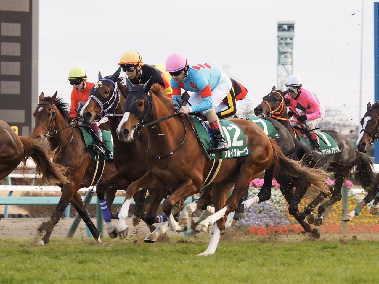 【日経新春杯】武豊「馬場を気にするようなところが…」レース後ジョッキーコメント