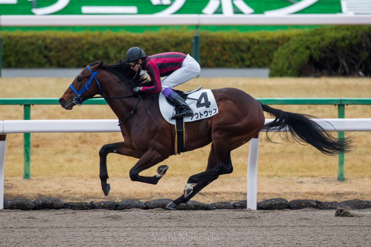 【京都1R】関西のオープニングレースは武豊がV!