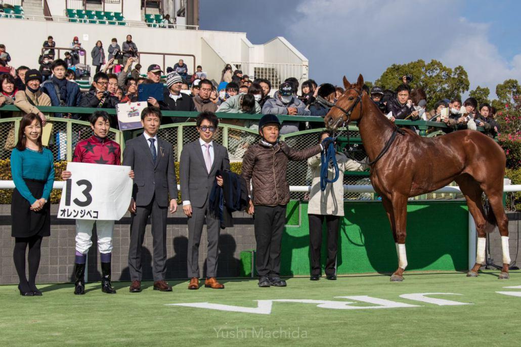 【新馬/京都3R】武豊オレンジペコがデビュー勝ち!