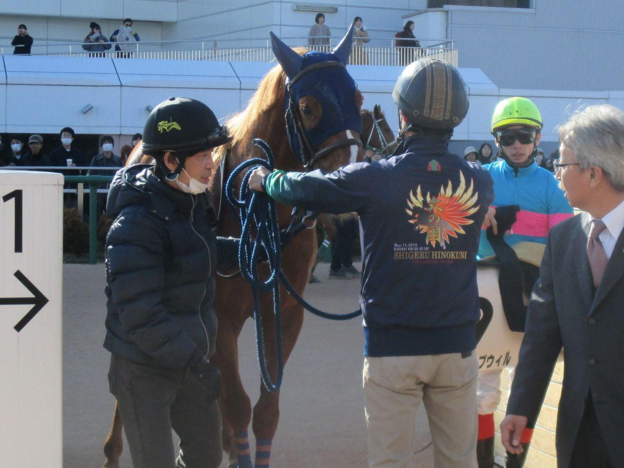 【新馬/中山4R】トゥザグローリー産駒 ペイシャチャームがデビューV!