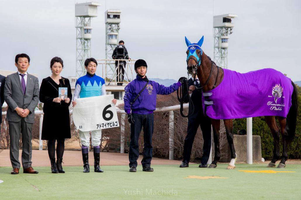 【新馬/京都6R】6億円ホースがデビューV!武豊騎乗のアドマイヤビルゴが抜け出す