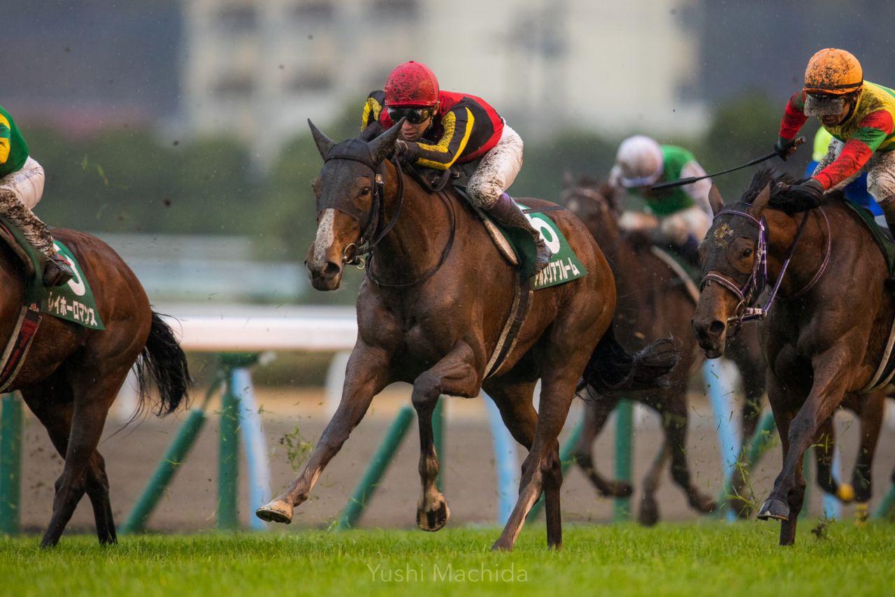 【愛知杯】ルメール「この馬場で…」1番人気のセンテリュオは5着敗退