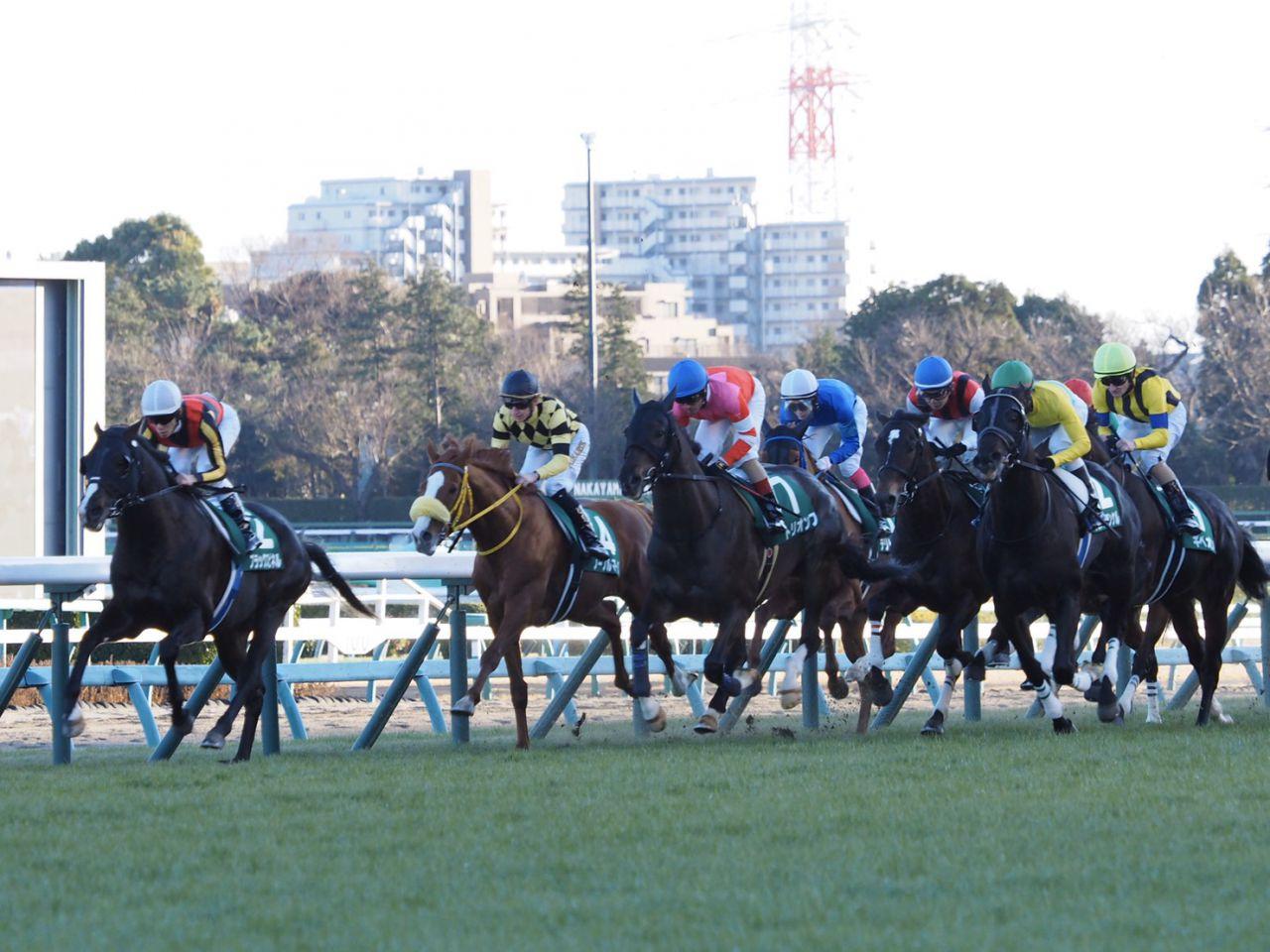 【中山金杯】内田博「フワフワして…」レース後ジョッキーコメント