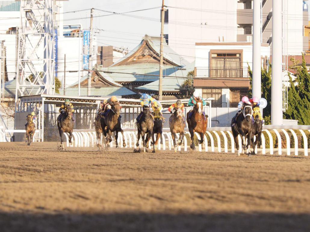 【川崎・川崎記念】マーフィー「また乗る機会があれば楽しみ」レース後ジョッキーコメント